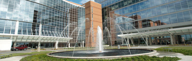 The Bruce Fountain in front of the UAMS hosipital